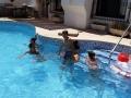 Benidorm pool day8 (800x450)